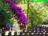 721-049-Juan-Herrera---Resort-77